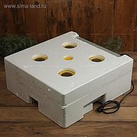 Инкубатор бытовой, на 63 яйца, автоматический переворот, 220 В, с кормушкой, поилкой, овоскопом, NIKA