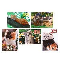 Карманный календарь 'Коты - 2' 2021 год, 7 х 10 см, МИКС (комплект из 10 шт.)