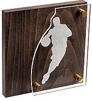 Награда Celebration, баскетбол, фото 1