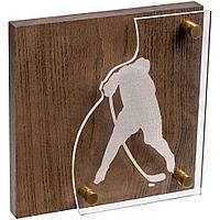 Награда Celebration, хоккей, фото 1