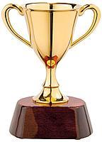 Награда «Кубок», фото 1