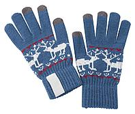 Сенсорные перчатки Raindeer, синие, фото 1