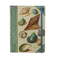 Книга для записей Shells, фото 1