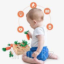 Развивающая игра - Морковки Монтессори, фото 2