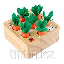 Развивающая игра - Морковки Монтессори, фото 3