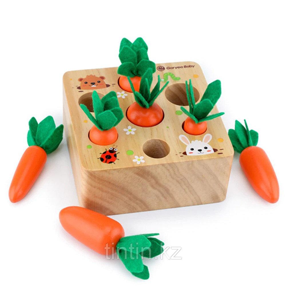 Развивающая игра - Морковки Монтессори