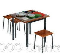 Обеденная группа для школьной столовой (800х800х750 мм) арт. ОЗ-3
