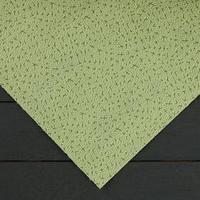 Материал укрывной, 1,6 x 12 м, плотность 100, с УФ-стабилизатором, фисташковый, 'Спанграм Зима'