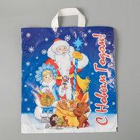 Пакет 'Праздничный мешок ', полиэтиленовый с петлевой ручкой, 28 х 35 см, 55 мкм (комплект из 25 шт.)