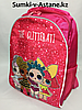 Школьный рюкзак для девочек в 1- й класс.Высота 37 см, ширина 28 см, глубина 15 см.