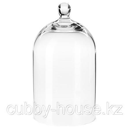МОРГОНТИДИГ Стеклянный клош, прозрачное стекло, 25 см, фото 2