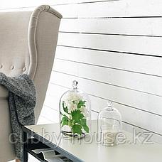 МОРГОНТИДИГ Стеклянный клош, прозрачное стекло, 25 см, фото 3