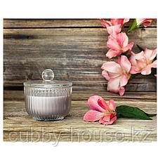 БЛОМДОРФ Ароматическая свеча в стакане, Гладиолус, серый, 9 см, фото 3