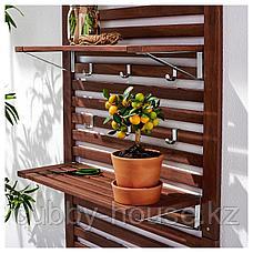 ЭПЛАРО Настенная панель+2 полки, коричневая морилка, 80x30x158 см, фото 2
