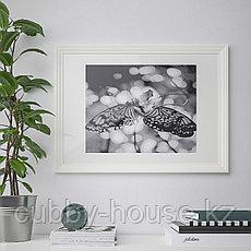 ЭДСБРУК Рама, белый, 50x70 см, фото 3