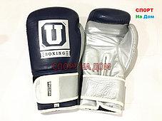 Боксерские перчатки Ultimatum Boxing 12 OZ, фото 2