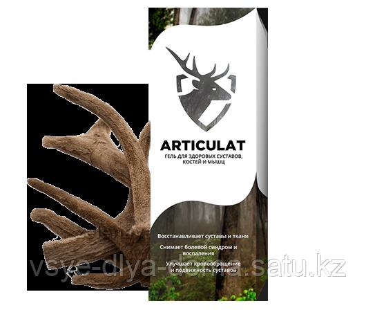 Артикулат - средство для суставов