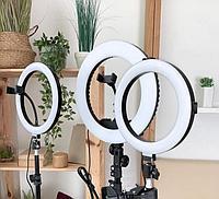 Кольцевая LED Лампа 26 см + Штатив 210 см в комплекте с держателем и шарниром, фото 1