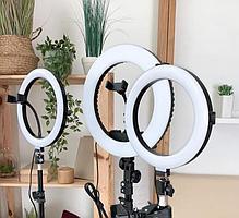 Кольцевая LED Лампа 26 см + Штатив 210 см в комплекте с держателем и шарниром