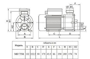 Насос однофазный Aqualine MD75M\JA75M (220V, без пф, 14m3/h*6m, 0,55kW, 0,75HP), фото 2