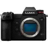 Фотоаппарат Panasonic Lumix DC-S1, фото 1