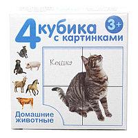 Пластмассовые кубики с картинками «Домашние животные», 4 штуки, фото 1
