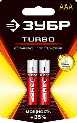 Батарейка щелочная Turbo, ЗУБР AAA, 2 шт. (59211-2C_z01), фото 2