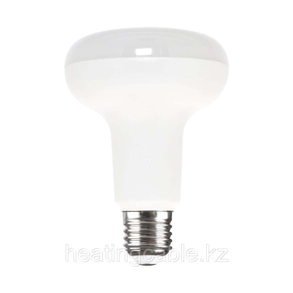 R39 30 LED CW