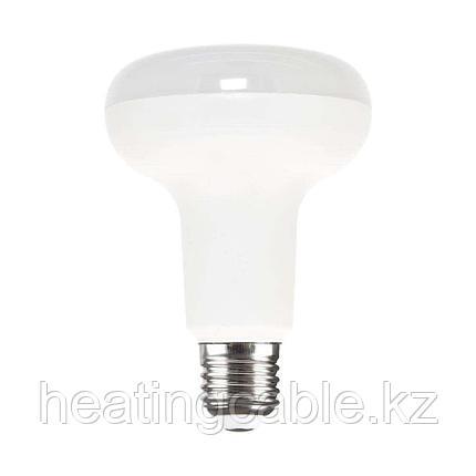 R39 30 LED CW, фото 2