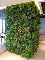 Вертикальное озеленение колонн