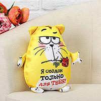 Мягкая игрушка-антистресс «Я создан только для тебя!», Котэ