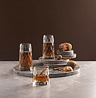Набор стаканов для коктейля Pasabahce Leafy 450мл (4шт), фото 5