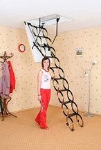 Чердачная лестница ножничная Oman 70х130х290см тел.Whats Upp. +7 701 100 08 59
