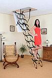 Чердачная лестница ножничная Oman 70х130х290см тел.Whats Upp. +7 701 100 08 59, фото 2