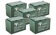 Комплект тяговых гелевых аккумуляторов RuTrike 6-DZF-24 (60V24A/H C2)