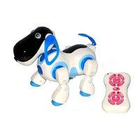 Smart dog - собака на радиоуправлении