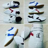Обувь (соги/степки) Таэквондо