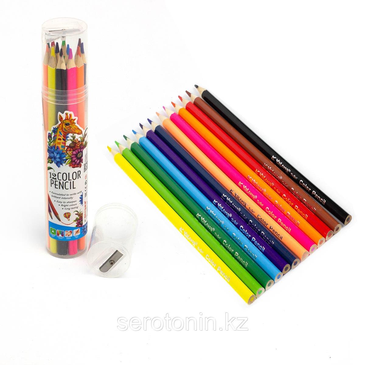 Карандаши цветные Yalong в пластик.тубусе 12 цв + точилка