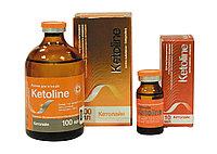 Кетолайн 10% 100мл ( айнил)