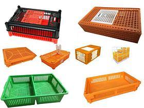 Пластиковые ящики для птицефабрик