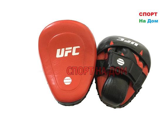 Лапы ударные UFC (кожаные), фото 2