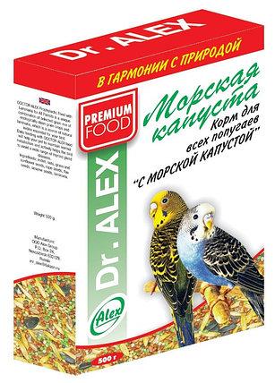 Корм для попугаев  Dr ALEX  500 гр ( морская капуста ) PREMIUM FOOD, фото 2