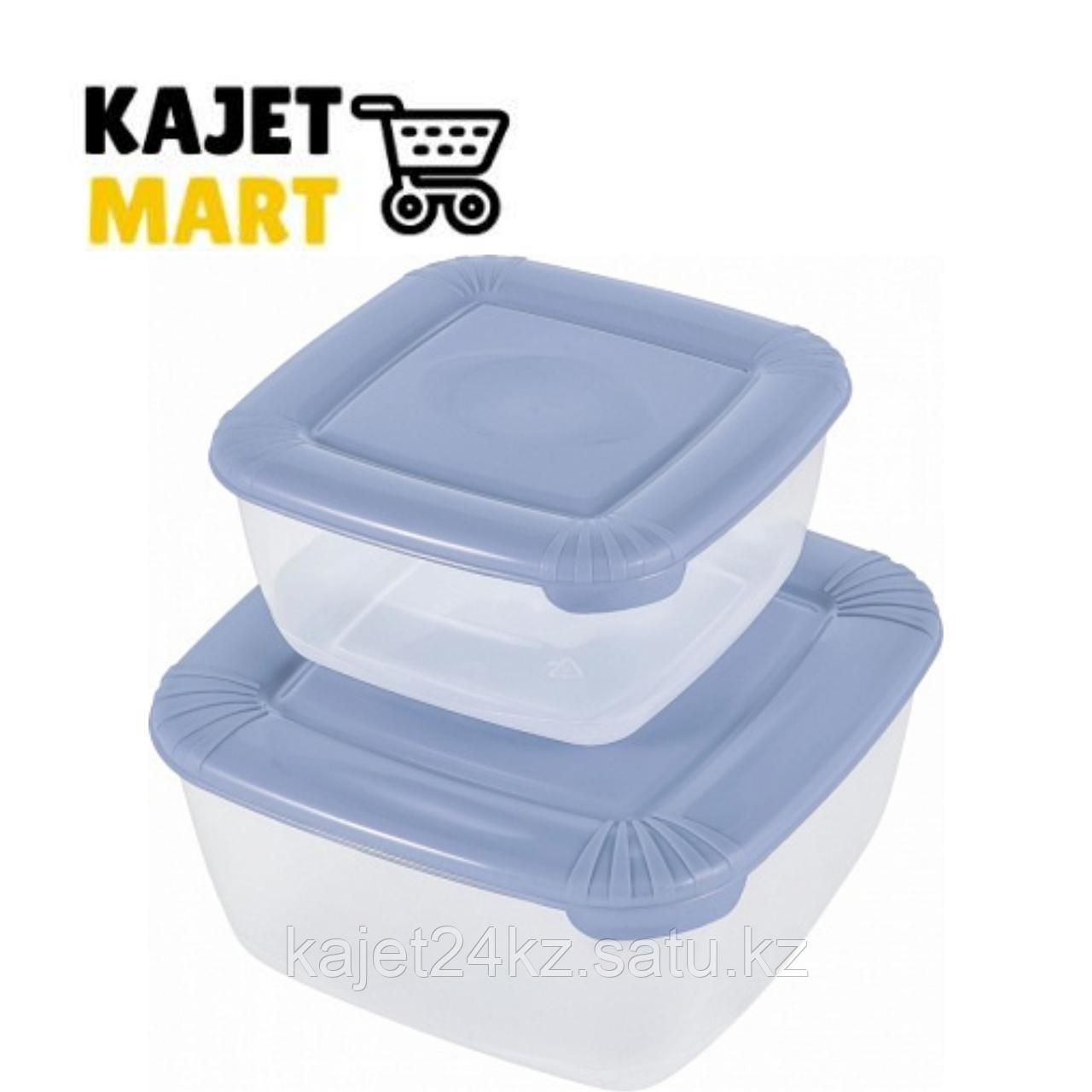 Набор для пищевых продуктов POLAR квадратных 2 шт. (0,46л; 0,95л) туманно-голубой
