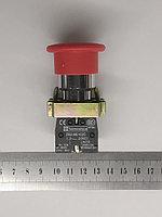 Кнопка стоп Грибок  NC Б/Ф, фото 1