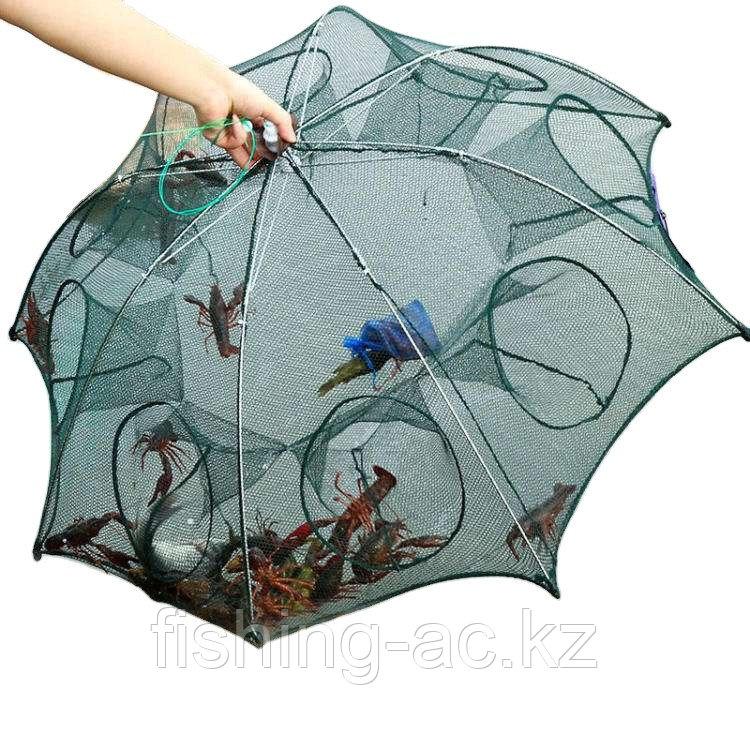 Раколовка Зонтик - фото 2