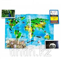 """Карточная настольная игра-викторина """"Животные нашей планеты"""", фото 2"""