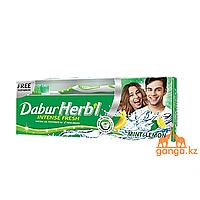 Гелевая Зубная паста Мята и Лимон (Mint & Lemon DABUR HERB'L) 150г + зубная щетка