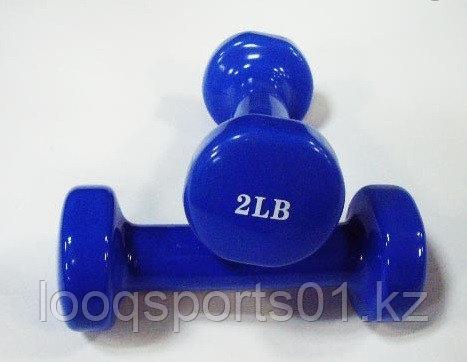 Гантели для фитнеса (2LB + 2LB)