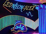 Холодный неон для фасада зданий. матрица 220в SMD 3528, Flex LED Neon , гибкий неон, холодный неон, фото 7