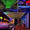 Холодный неон полупрофессиональный матрица 220в SMD 3528, Flex LED Neon , гибкий неон, холодный неон, фото 10